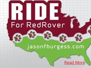 RedRover Donations